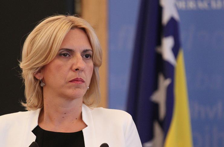 Ž.Cvijanović: Republika Srpska rođena pre rata, a odbranjena u ratu