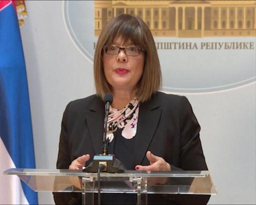 Gojković: Važan trenutak za raspravu o Kosovu i Metohiji