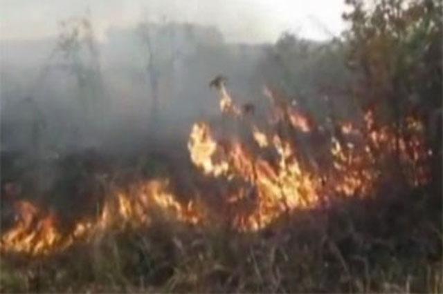 Veliki broj požara u Pčinjskom okrugu
