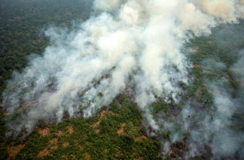 Brazil raspoređuje vojsku u Amazoniju, Tramp ponudio pomoć