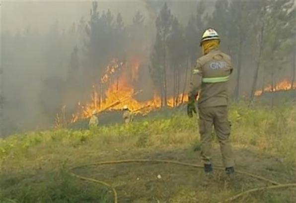 Portugalija: U požarima povređeno osam vatrogasaca i 12 civila
