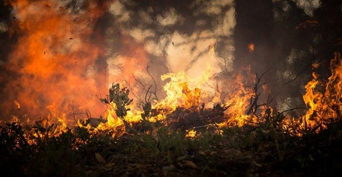 Veliki požar kod Šibenika, zatvoren deo auto-puta