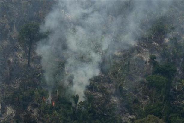 Vojska se raspoređuje po prašumama Amazonije u borbi protiv požara