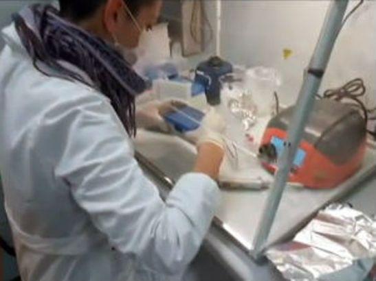 Povećava se broj objekata za testiranje na koronavirus