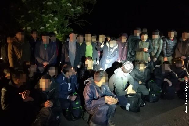 Privedena 52 migranta na mađarsko-srpskoj granici