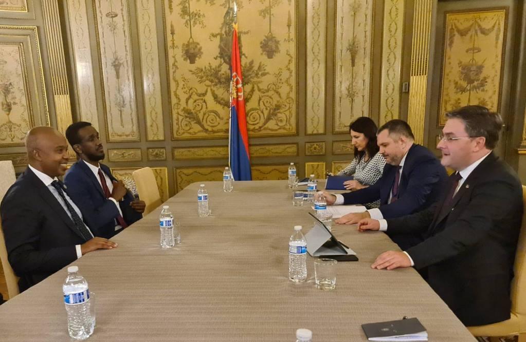 Zajedničkim angažmanom intenzivirati saradnju Srbije i Somalije