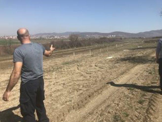 Gračanica: Miloradu Veliću pokradeno 300 sadnica šljiva