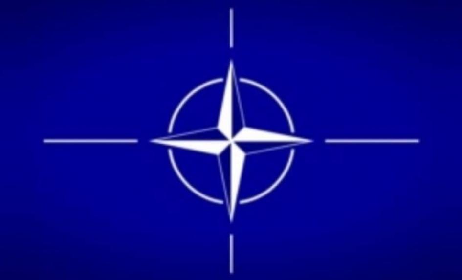 Kostić: Nije tema članstvo u NATO, već unapređenje saradnje