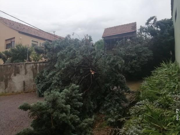 Stiglo osveženje – jaka oluja u Novom Sadu, kiša u Beogradu