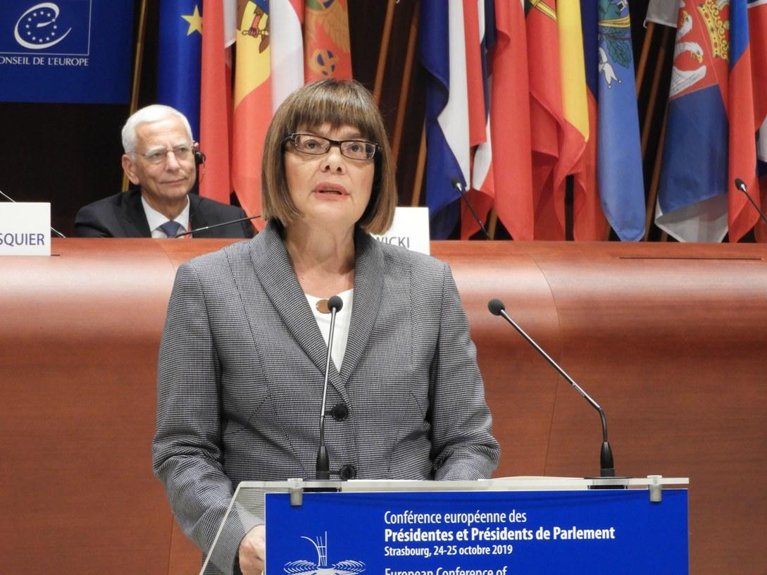 Gojković: Evropska kuća ne može biti potpuna bez Srbije