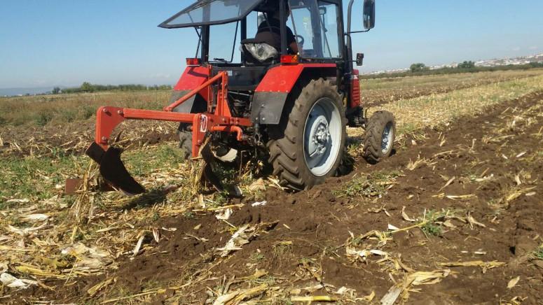 Setva ozimih useva pri kraju, cene semenske pšenice visoke
