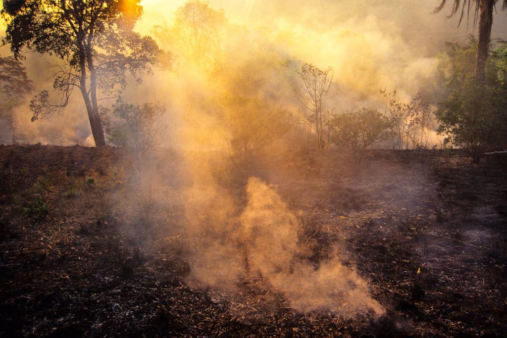 Dok Bolsonaro i ekolozi upiru prstom jedni u druge, Amazonija gori