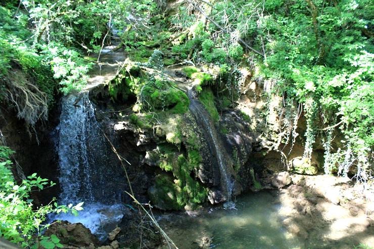 Danas se obeležava Dan zaštite prirode Srbije