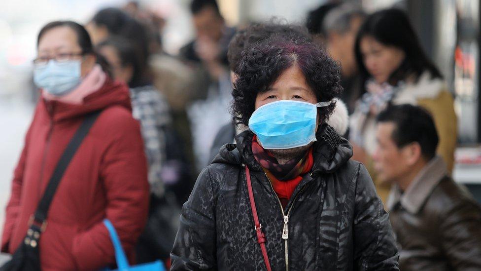 Zmije mogući izvor koronavirusa, dva kineska grada u izolaciji