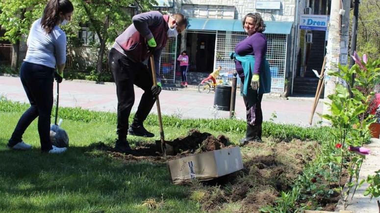 U Leposaviću sprovedena akcija uređenja zelenih površina