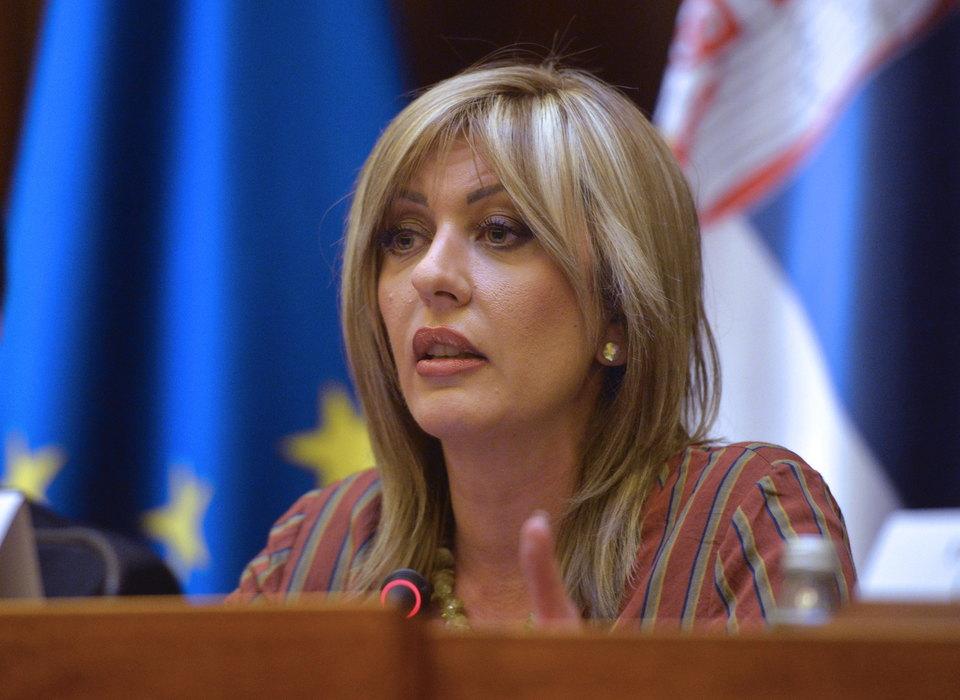 J.Joksimović: Srbija, kao kandidat za EU, veoma odgovorna