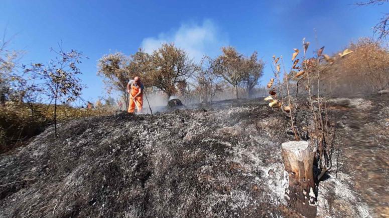 U požaru u Žitkovcu izgorelo nisko rastinje