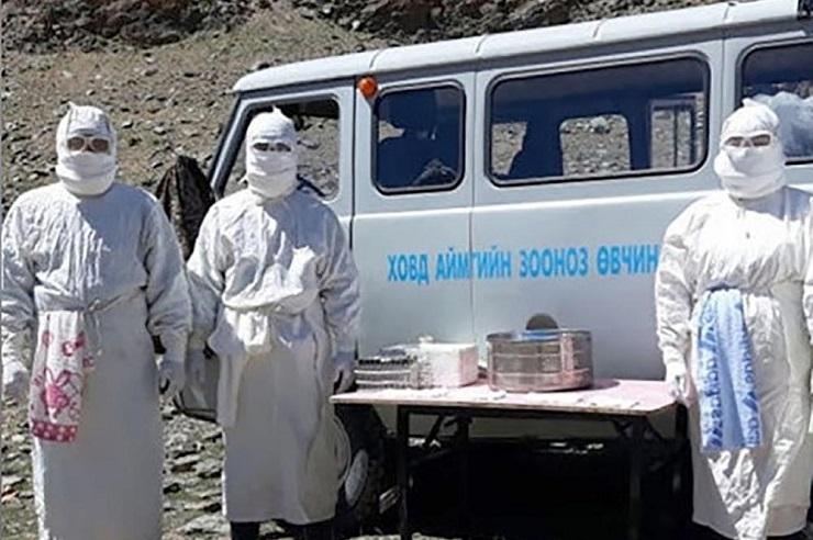 Kuga se pojavila u Mongoliji, uveden karantin u gradu Kovd