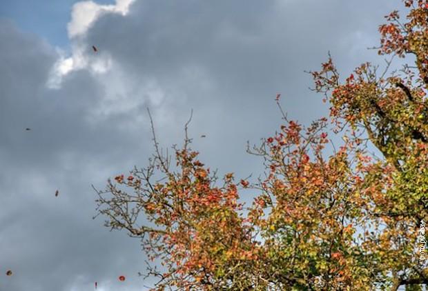 Promenljivo oblačno, mestimično sa kišom, do 28 stepeni