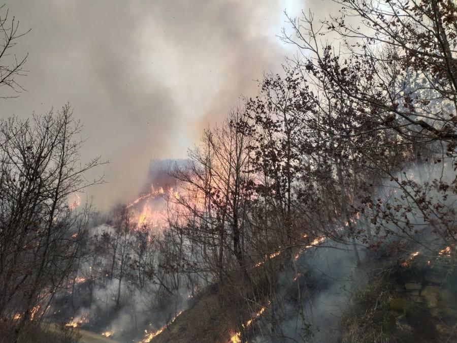 Ugašen požar u Morači