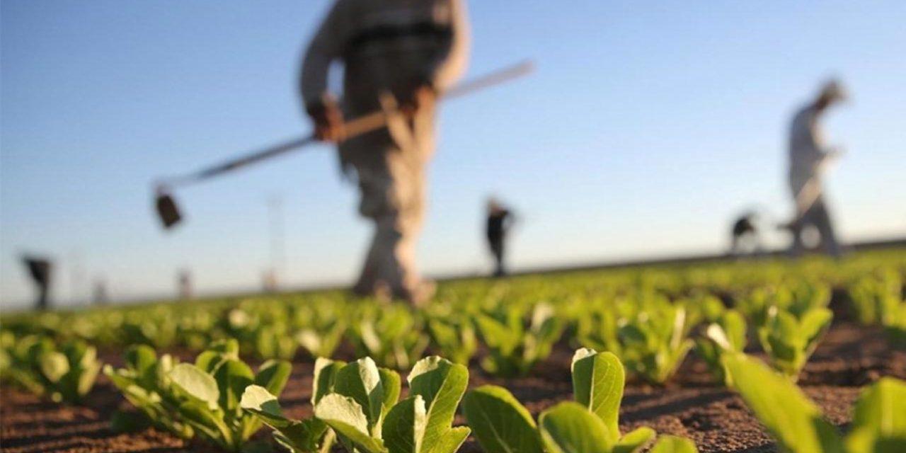 Brnabić sa Ćuom o modernizaciji poljoprivrede