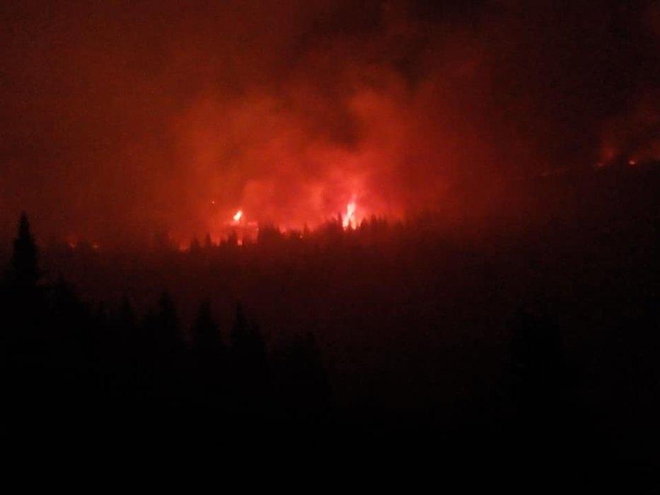 Veliki požar na Staroj planini, imovina i stanovništvo nisu ugroženi