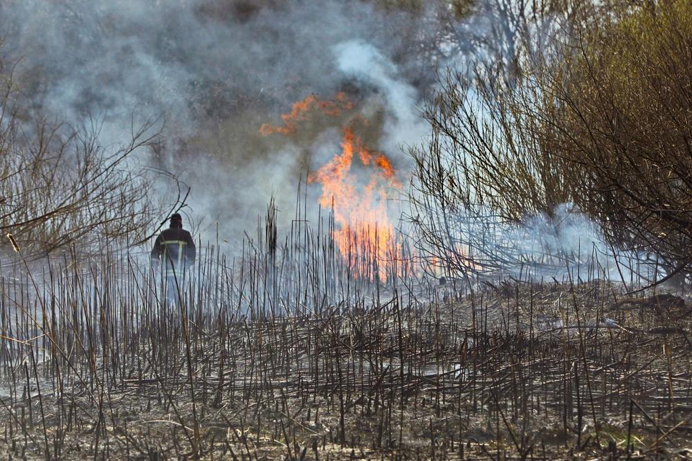 Požar u blizini Černobilja se proširio