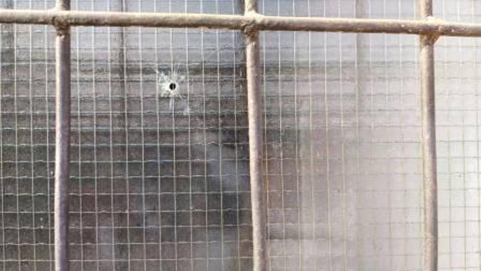 Pucano na kuću direktora OŠ