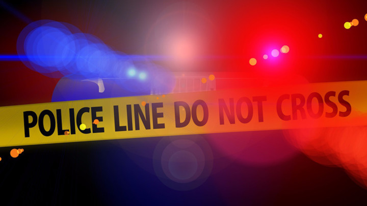 Hjuston: U pucnjavi ranjeno pet policajaca, napadač ubijen