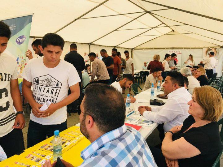 OEBS organizuje sajmove zapošljavanja za Rome, Aškalije i Egipćane na Kosovu