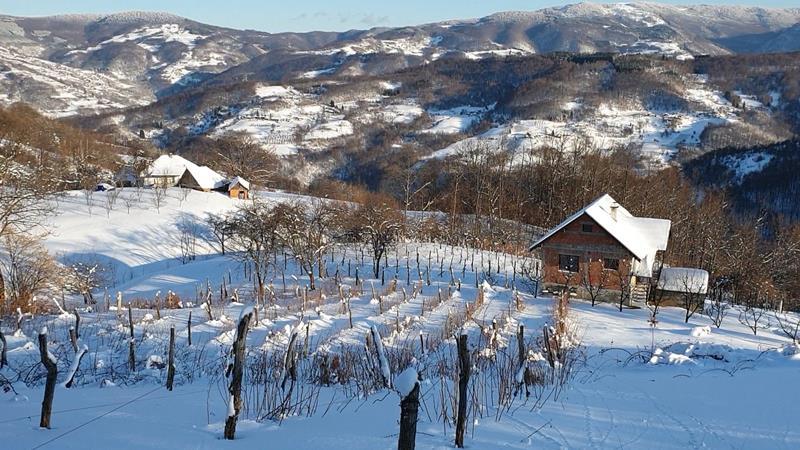 Pojedina toplička sela bez struje već deset dana