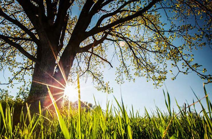 Prepodne pretežno sunčano, do 27 stepeni, uveče moguća kiša