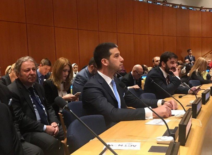 Udovičić na forumu u UN: Mladi da veruju u sebe i vredno rade