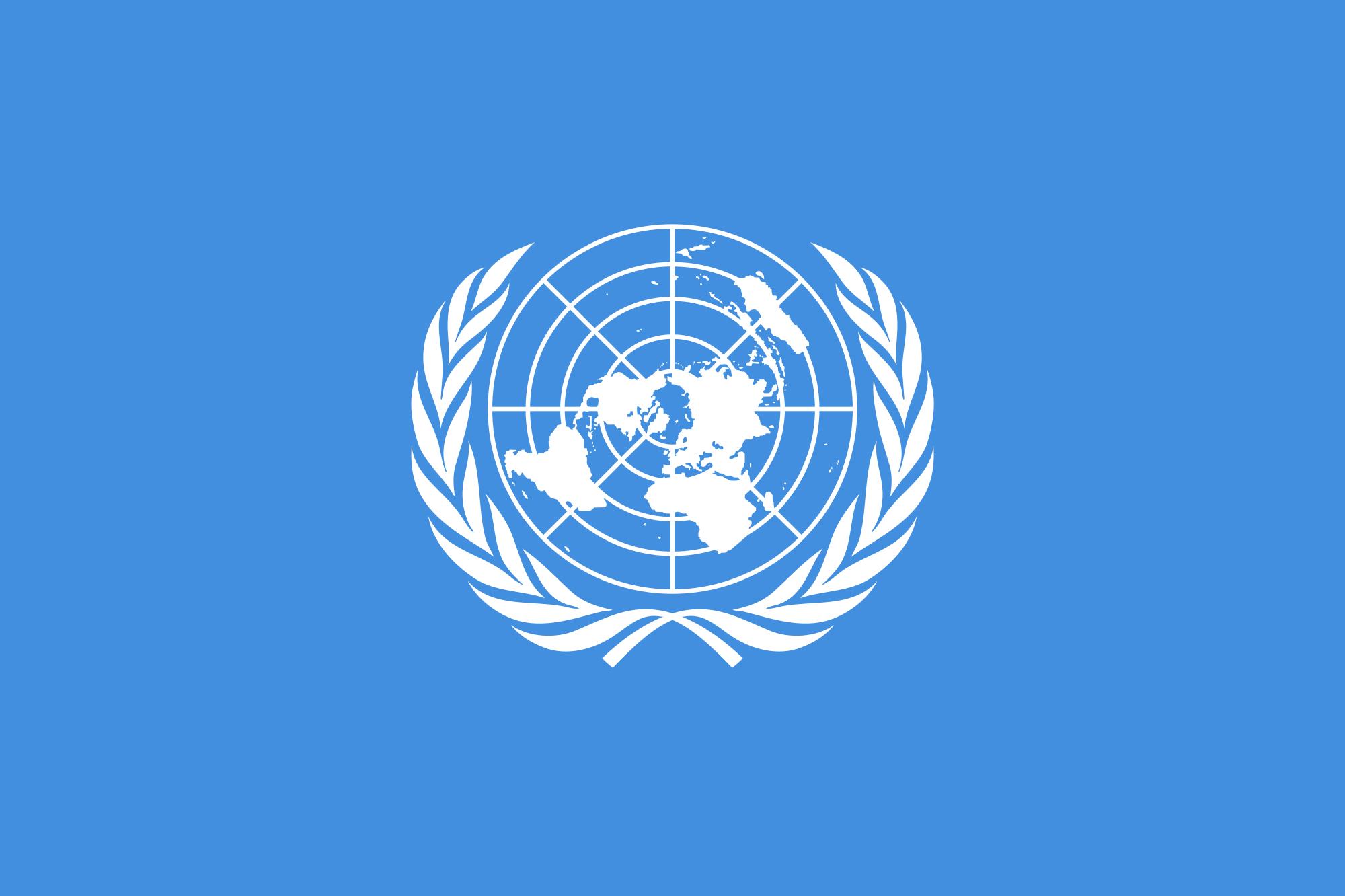 Održan onlajn skup povodom obeležavanja 75 godina UN