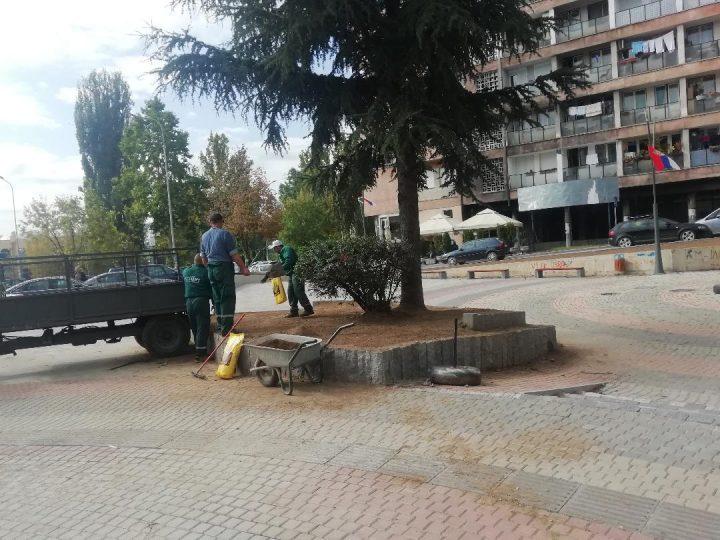 Nastavljaju se radovi na ozelenjavanju i održavanju zelene površine
