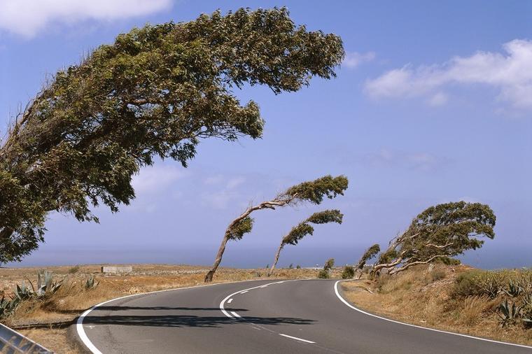 AMS upozorava na jak vetar posebno vozače kamiona i autobusa