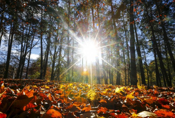 I danas sunčano i toplo, Miholjsko leto do 24. oktobra