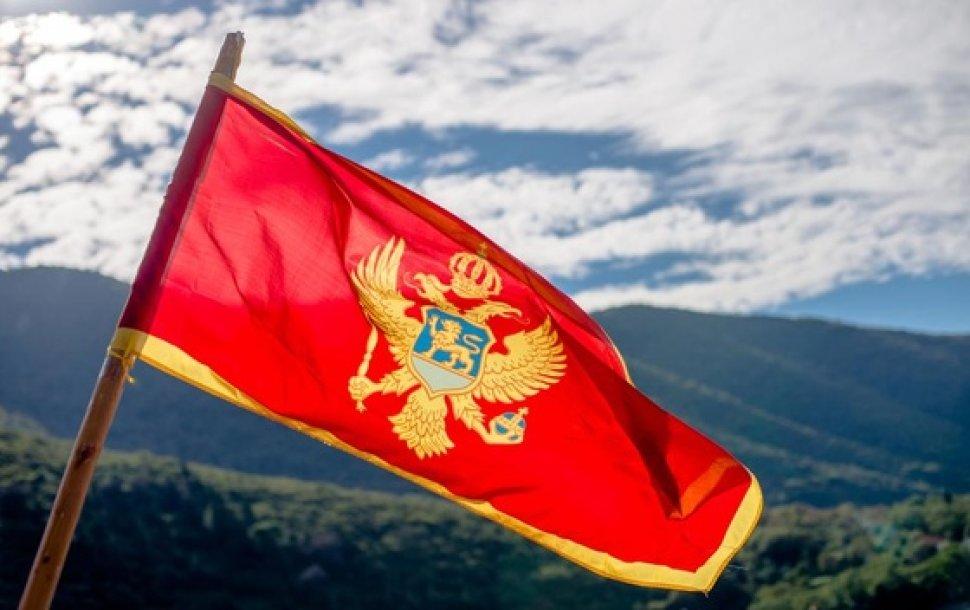 CG: Nacionalni savet Albanaca se buni zbog zastave