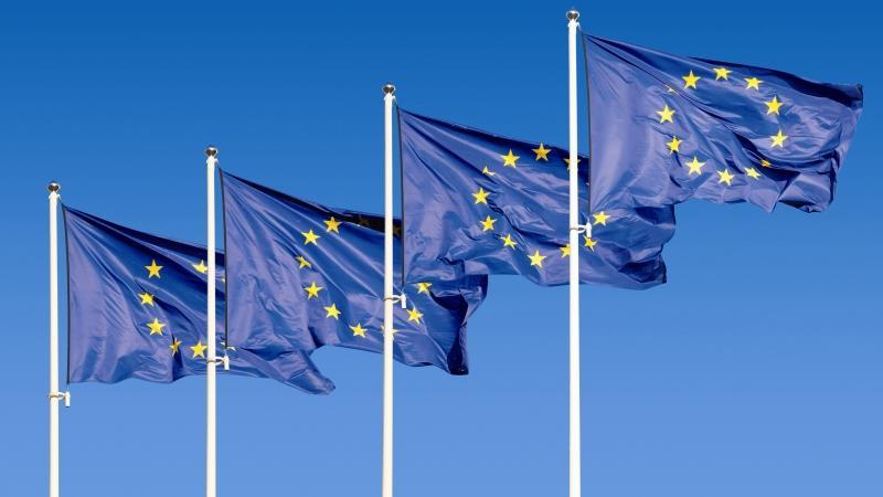 Evropska