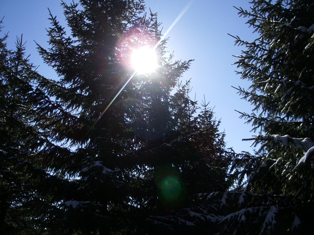 Posle hladnog jutra, pretežno sunčano