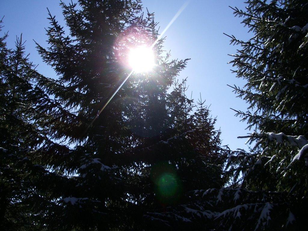 Ujutro mraz, tokom dana sunčano i toplije