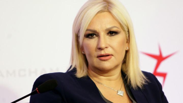 Mihajlović o predlogu za smanjenje cenzusa